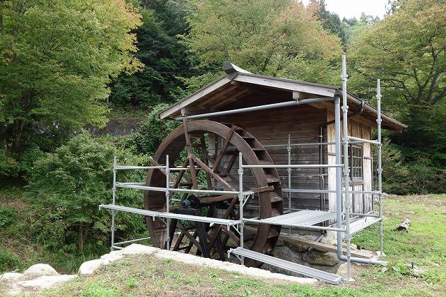 いよいよ水車の修理が始まりました。水車の直径が人の倍以上あり、全体がもろくなっているため、安全第一で足場を組ます