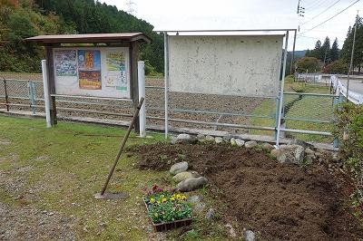 掲示版の近くにある花壇を利用します。土を耕し乾燥した鶏糞を混ぜて植える準備です。